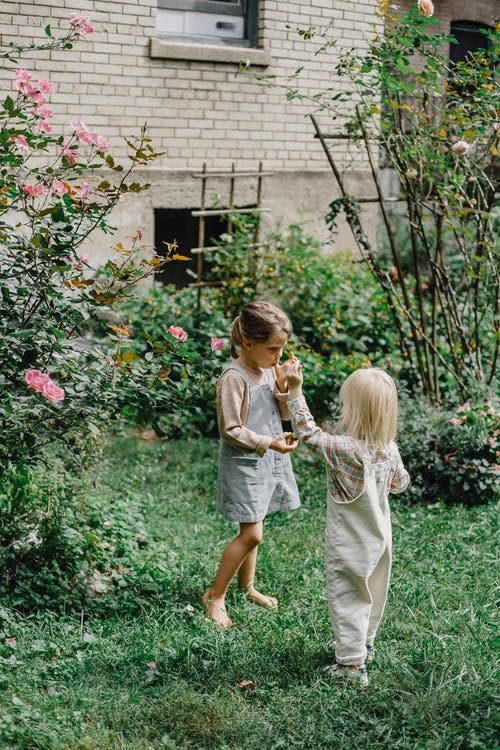 děti zahrada